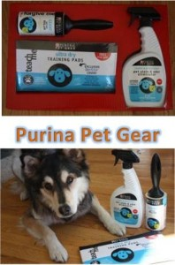 Purina Pet Gear Training Pads {Ends 6/17}
