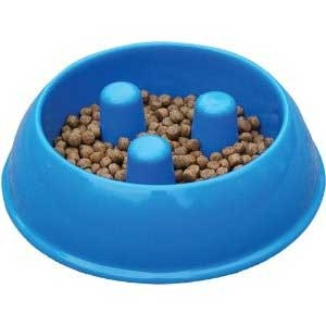 Slow your dog's eating with Brake Fast Dog Bowl
