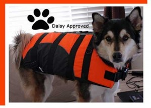 GlamourDog.com has such cute dog items!