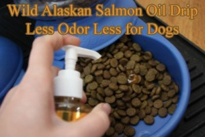 Giveaway! Best Pet Health – Wild Alaskan Salmon {Ends 12/8}
