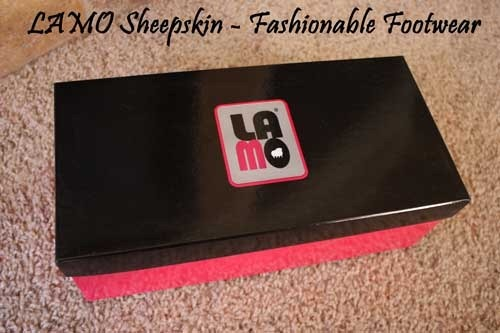 Fashionable-footwear-sheeps