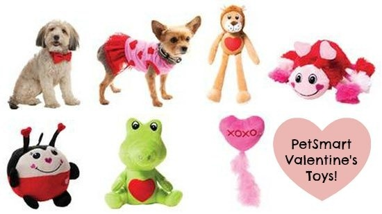 Pet-Smart-Toys-for-Dogs-and