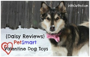 Dog Fun Playing in the Snow with PetSmart {Giveaway}
