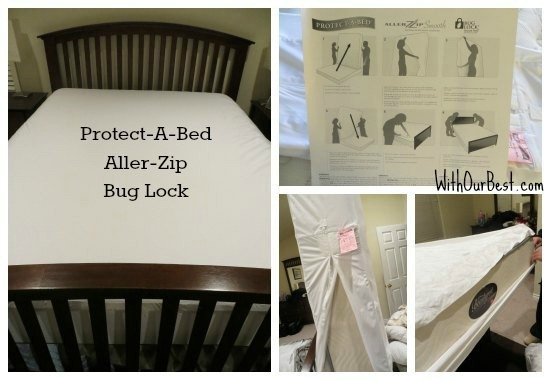 Protecting Your Mattress From Bugs And Allergens Of Pets