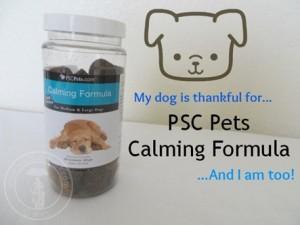 Calming Medicine for Dog Anxiety