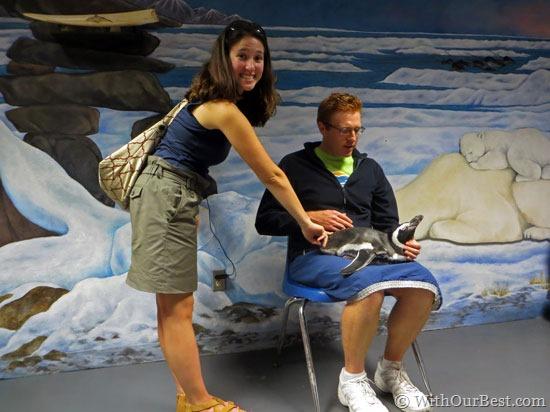 Behind-the-Scenes-at-SeaWor