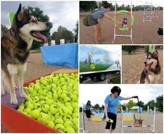 beneful park #dreamdogpark play date denver