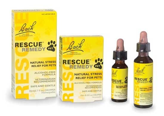 Rescue Remedy For Cats Whole Foods