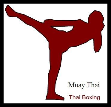 Muay Thai Boxing Thailand Camp