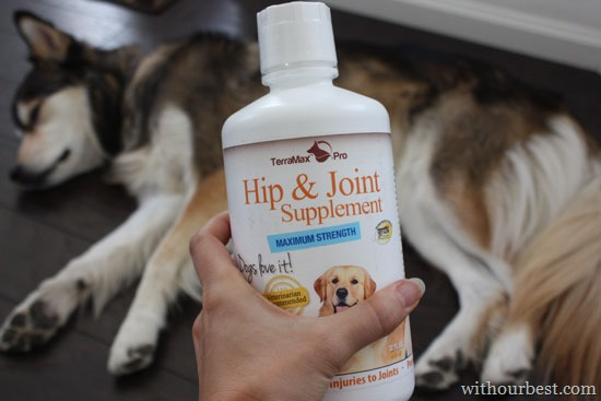 Hip and Joint Supplement for Dogs #terramaxpro