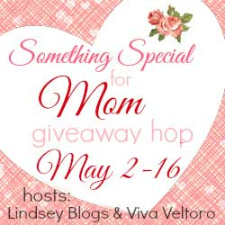 Something Special Giveaway Hop (Win Invisible Glass Cleaning Pack)