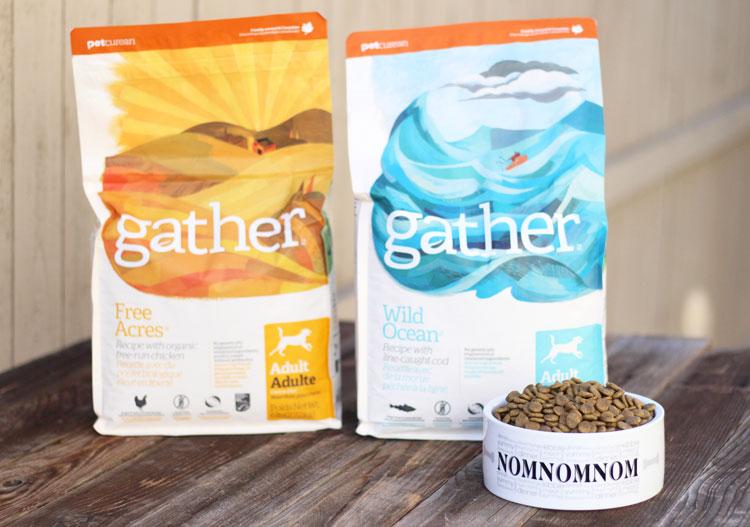 good-dog-food-nutrition