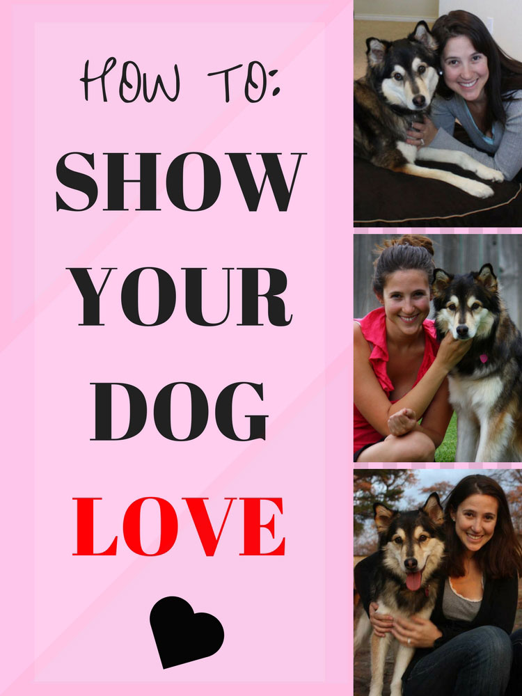 How to Show Your Dog Love