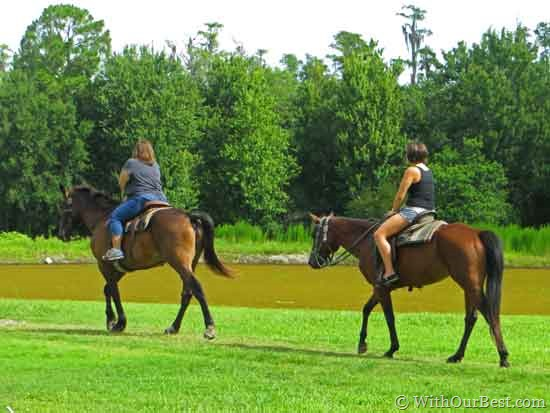 horse-world-riding-stables