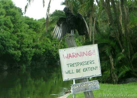 vulture-warning-gatorland