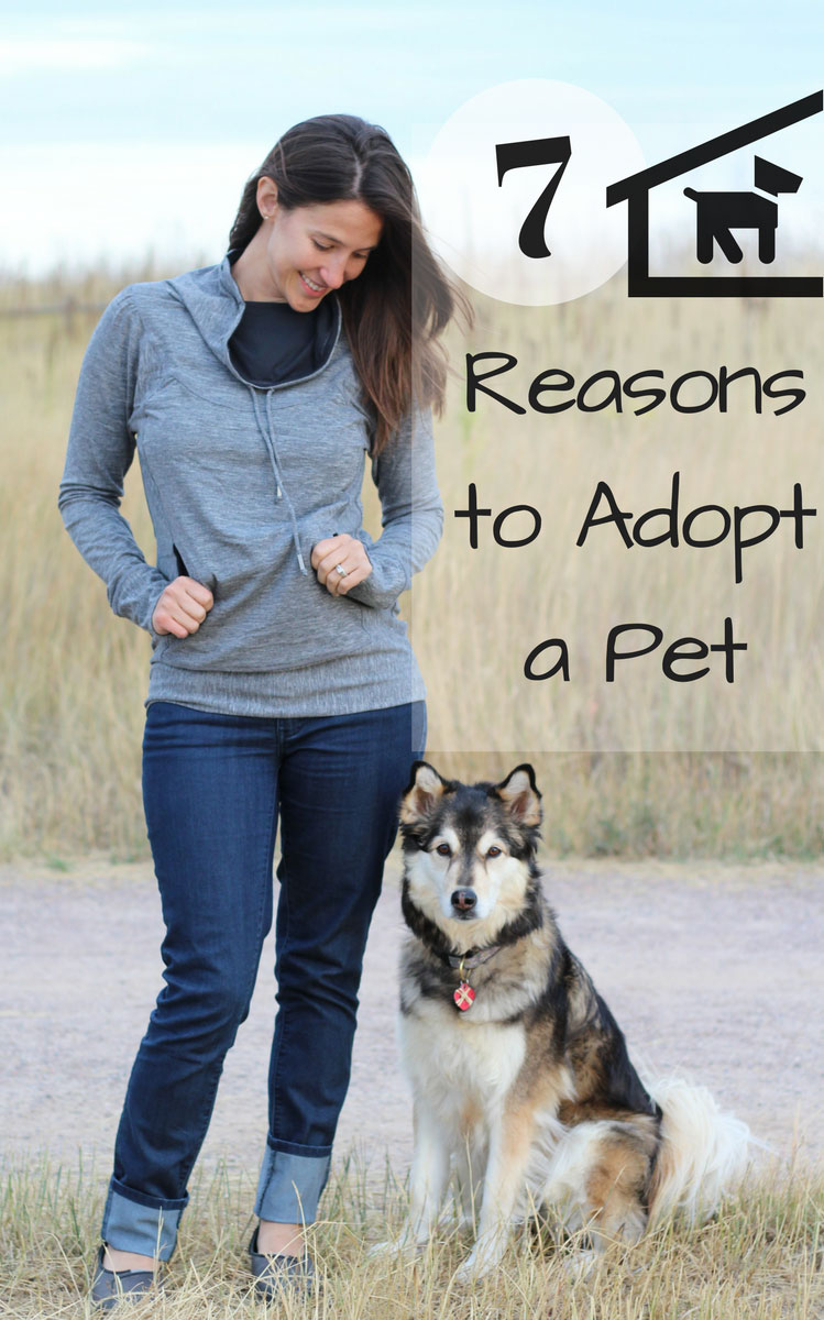 7 Great Reasons to Adopt a Pet