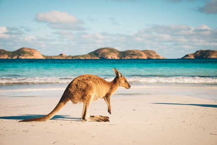 The Relocation Question – Why Do People Migrate to Australia