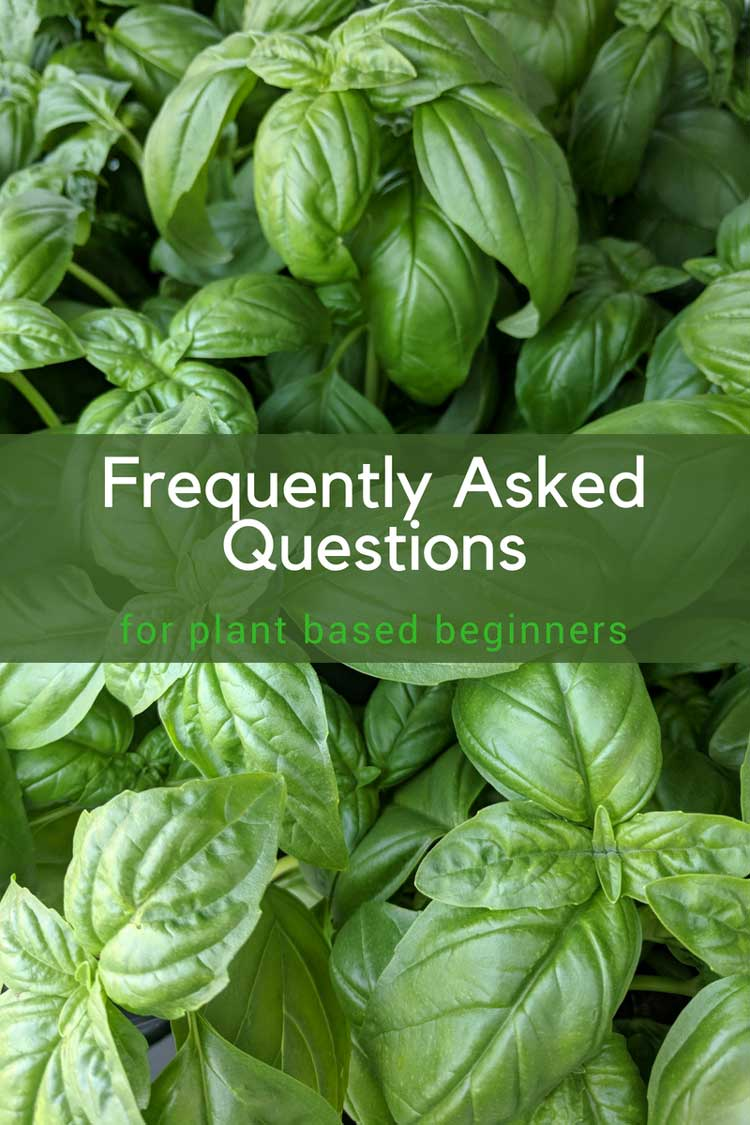 Frequently Asked Questions for Plant Based Beginners